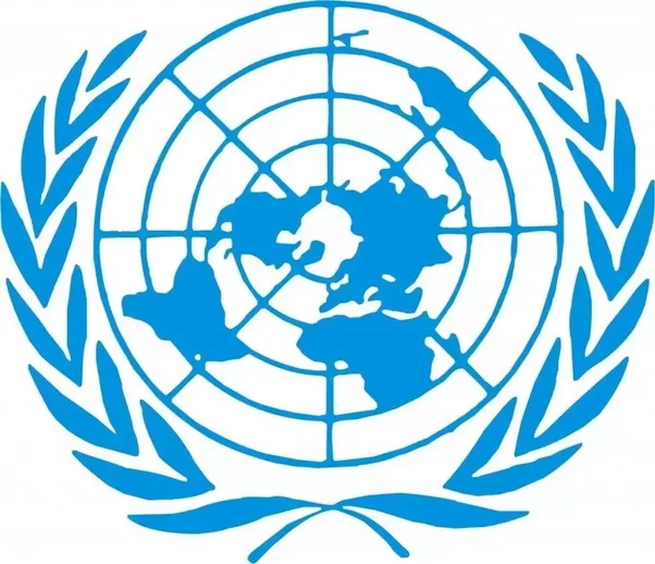 Educate Children In Their Mother Tongue , Urges UN Rights Expert