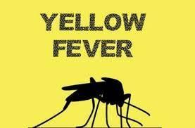 Yellow Fever : Over 150 Feared Killed In Katsina