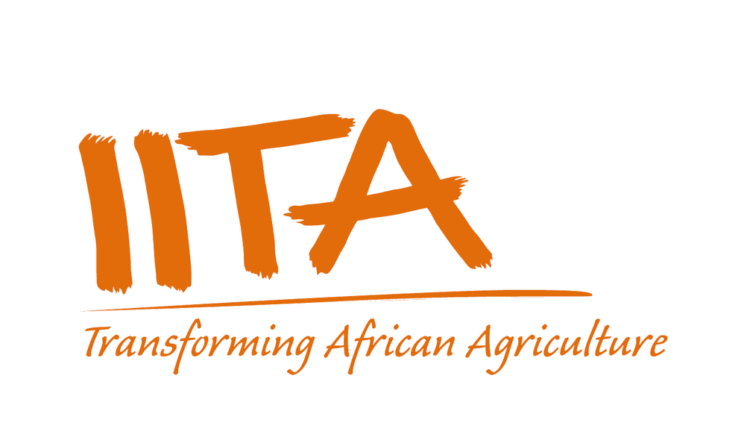 IITA Unveils Digital Tools In Cassava And Maize Farming Systems