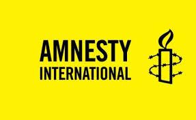 Nigerian Military Blasts Amnesty International over Report on BHTs/ISWAP
